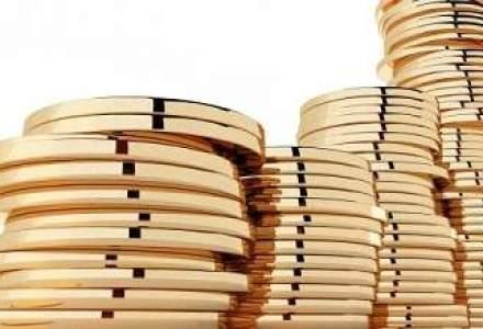 BNR a incheiat anul 2012 cu rezerve valutare in scadere cu 2 miliarde euro fata de anul precedent
