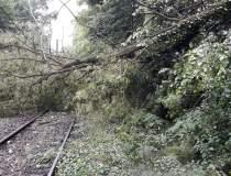 Trenuri blocate pe ruta...