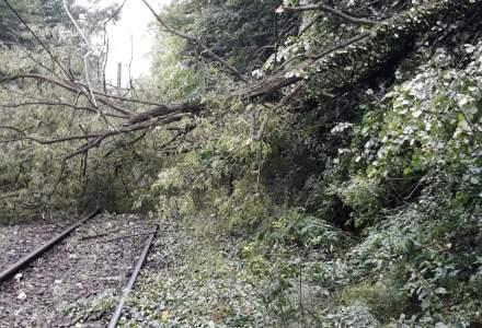 Circulatia feroviara a fost reluata in vestul tarii, mai multe trenuri sunt blocate pe ruta Bucuresti-Timisoara si au intarzieri de pana la 7 ore