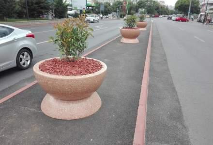 Primaria Sectorului 4 despre jardinierele de 4.000 lei: Au fost achizitionate la cel mai bun raport calitate-pret