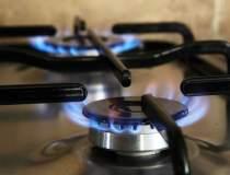 Importurile de gaze au...