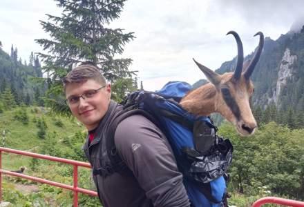 Poza zilei: o capra neagra cu piciorul rupt, dusa la medic in rucsac de catre salvamontisti