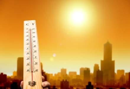 Vor fi 40 de grade Celsius joi in Franta, Belgia, Germania si Olanda