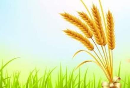 Statul va impozita mai multi agricultori