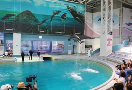 Ministrul Turismului a semnat contractul de finantare pentru modernizarea Delfinariului din Constanta