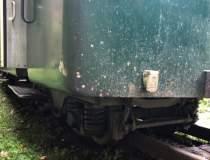 Locomotiva trenului Mocanita...