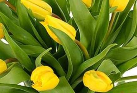 Frunzetti, Floria: Vanzarile online de flori vor ajunge anul acesta la 2 mil. euro