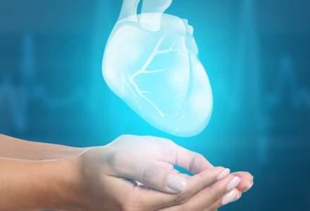Sorina Pintea: Din 15 septembrie, fiecare spital judetean va fi obligat sa aiba un centru de prelevare organe