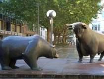 Dupa tauri si ursi, pe Bursa...