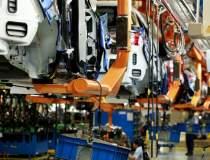 Industria auto locala, la...