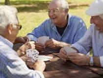 Gospodariile de pensionari,...