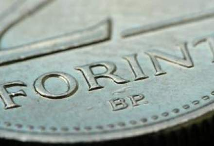 Forintul a scazut la minimul ultimelor 10 luni fata de euro