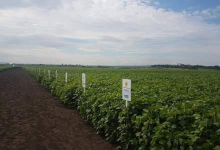 Combinatul de Ingrasaminte Chimice Navodari si-a extins operatiunile in Bulgaria si Ucraina
