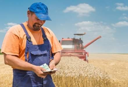 Studiu: Agricultura romaneasca va creste cu jumatate de miliard de euro in 2019