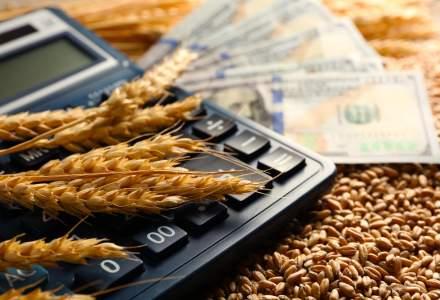 Studiu: Datoriile firmelor din sectorul agricol din Romania sunt in continua crestere