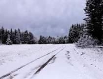 COD PORTOCALIU de ninsori: ce...