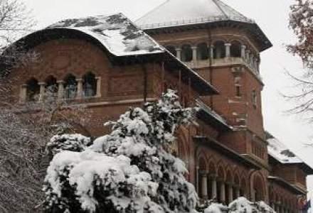 Muzeul Taranului Roman, in criza: mai putini vizitatori, venituri pe minus