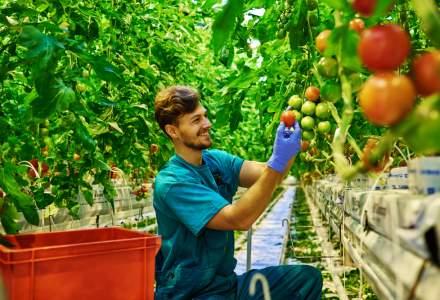 Vesti bune: elevii din 58 de licee agricole din Romania vor face schimb de experienta cu olandezii, in urmatorii cinci ani