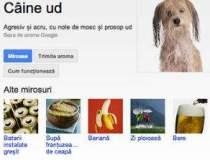 "Google lanseaza ""Google Nas"":..."