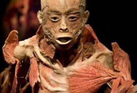 Expozitia The Human Body de la Antipa: Ministerul vrea conditii pentru elevi