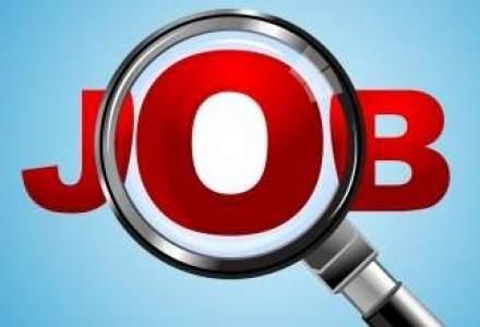 Compania de servicii IT Stefanini Romania cauta 30 de oameni