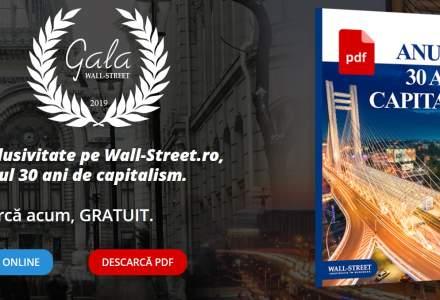 In cautarea capitalistului perfect