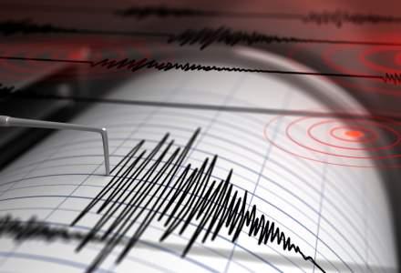 PAID: In ultimii 100 de ani, in Romania s-au inregistrat 13 cutremure semnificative, care au dus la producerea a 2.630 decese