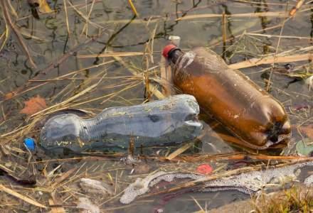 Poluare la cativa kilometri de Bucuresti: ce se intampla la raul Ciorogarla