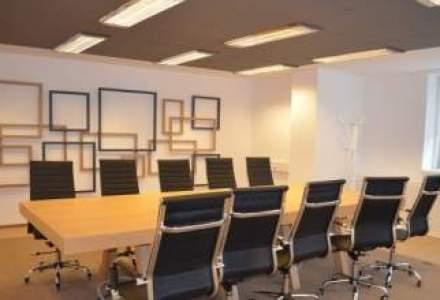 Un birou de avocatura altfel: cu bufnite, papagali si soricei pe pereti