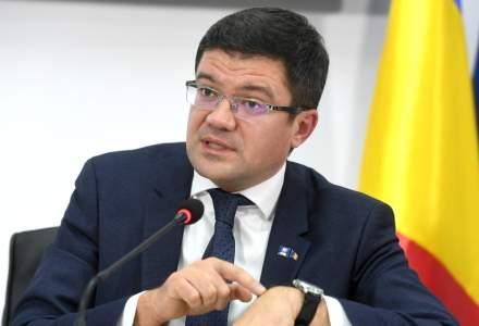 Costel Alexe, noul ministru al Mediului, vrea sa interzica exportul de lemn in spatiul extracomunitar