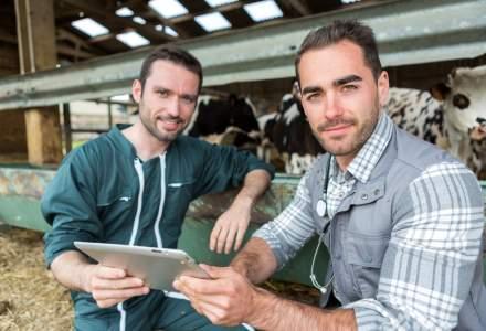 Agricultura inca atrage tineri: meseriile in care aleg acestia sa se califice