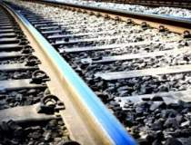 Tronsonul de cale ferata...