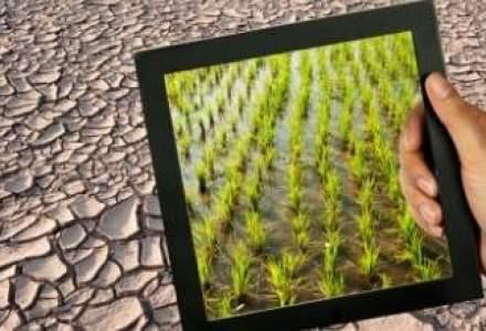 Semnal de alarma: Fermieri, pregatiti-va pentru seceta din iulie-august!