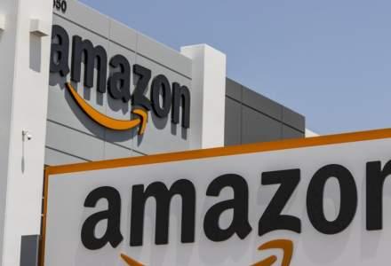 """Cum sunt hartuiti si amenintati """"cu datul afara"""" angajatii Amazon care militeaza impotriva schimbarilor climatice"""