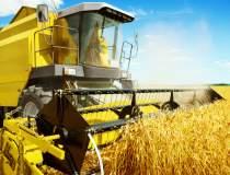 Start-up de agricultura Holde...