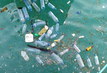 Comisia Europeana analizeaza interzicerea ambalajelor din plastic