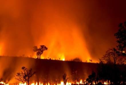 Fumul de la incendiile din Australia va ajunge pe tot globul, iar atmosfera ar putea fi schimbata