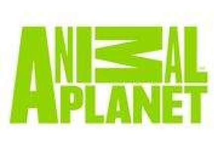 Animal Planet va avea un nou 'look' si semnal local dedicat pentru Romania