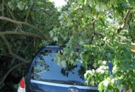 UPDATE: Cel putin 17 raniti dupa furtuna din Capitala, o persoana este in coma