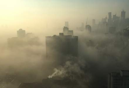 Ruxandra Ulmeanu, profesorul universitar doctor: Poluarea aerului este al treilea contributor pentru decese la nivel mondial