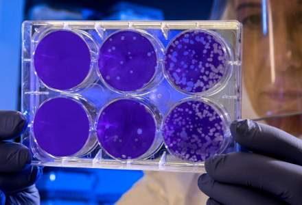 Cercetatorii chinezi au izolat tulpina virala a coronavirusului si incearca sa gaseasca un vaccin