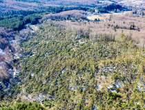FOTO Peste 110.000 hectare de...