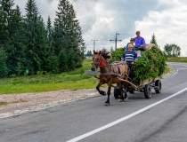 Agricultura românească,...