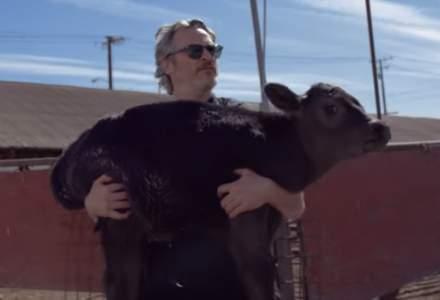 Joaquin Phoenix a salvat o vacă şi un viţel de la abator