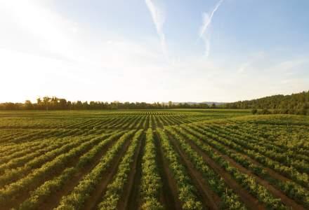 """Carrefour lansează a doua ediție a programului """"Creștem România bio"""", inițiativă care susține dezvoltarea agriculturii ecologice locale"""