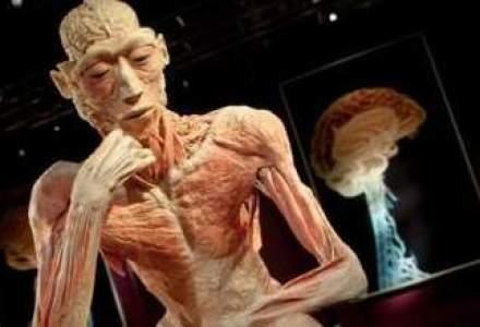 "Expozitia ""The Human Body"" s-a prelungit pana pe 4 august"