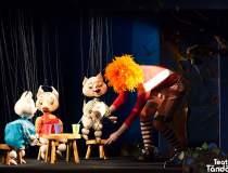 Teatrul pentru copii...