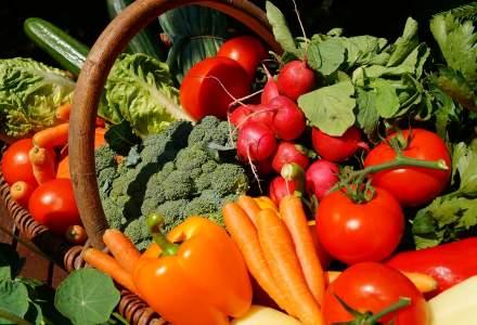 Studiu Termene.ro: Necesarul de alimente al populației poate fi acoperit din surse interne