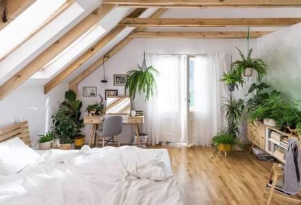 Scandinavian Design House lansează un showroom virtual de mobilă în România