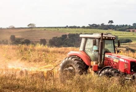 Ministrul Agriculturii, către fermieri: Toți cei sănătoși să iasă la câmp. Este posibil ca în toamnă să consumăm mai multe produse românești decât din import